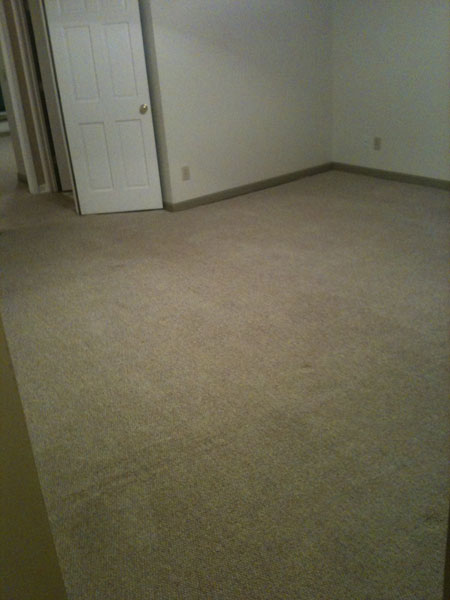 Carpet Cleaning In Atlanta Our Works 5 Bcleaning